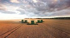 ¿Crisis global por la agricultura industrial?