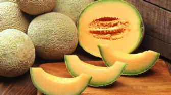 Coahuila plantea profesionalizar producción de melón