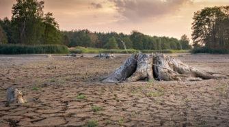 Innovaciones agrícolas para reforzar vulnerabilidad ante las sequías: FAO