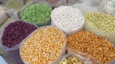 Sader y la CCI acuerdan acciones para producción sostenible de granos