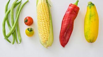 Chapingo pone a disposición patentes para mejora de alimentos