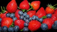 Advierten crisis en berries de Michoacán por uso de agroquímicos