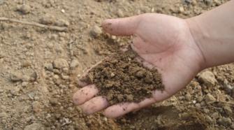Buscan rescate del campo con fertilizante orgánico