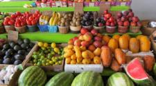Registra México superávit agroalimentario