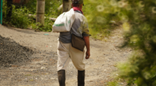 Programa motiva agricultores en Yucatán a no emigrar