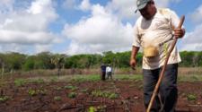 Proyecto de sustentabilidad en Yucatán es reconocido por la ONU