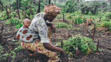 Sustentabilidad a partir de la inclusión de agricultura familiar: ONU
