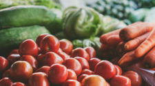 Estiman crecimiento de 1.7% en sector agrícola