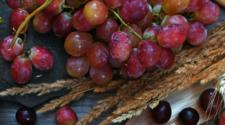 Abren nuevos mercados de exportación para el trigo y uva de mesa