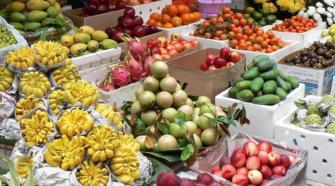 Coliman aumenta su oferta de frutas tropicales hacia el extranjero