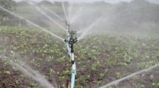 Costo de uso de agua subiría hasta 3 mil pesos por hectárea
