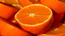 En picada, producción de naranja en municipio quintanarroense