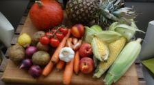 Michoacán transita hacia una hortofruticultura sustentable