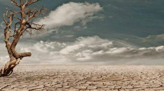 Agricultura orgánica puede reducir los riesgos de la desertificación